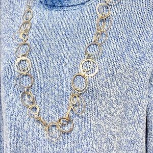 Daisy Fuentes Silver Chainlink Necklace
